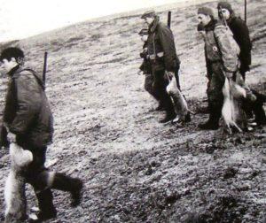 Polowanie na zające – 1962r.